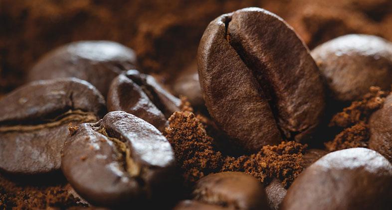 grãos de café gourmet